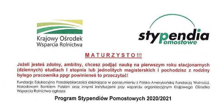 Program Stypendiów Pomostowtch 2020/2021